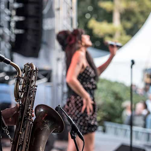 Tribute festival Amy Winehouse
